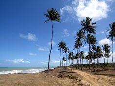 O município de Rio Tinto, no litoral norte da Paraíba, abriga a Praia da Campina, uma extensa faixa de areia que costuma ser ponto de encontro de muitos paraibanos durante o verão