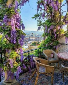 "Wisteria covered patio in Granada, Andalusia, Spain. ""Wisteria woke me this morning, And there was all June in the garden. Plantation, Garden Landscaping, Landscaping Ideas, Pergola Ideas, Patio Ideas, Pergola Kits, Pergola Patio, Wood Patio, Screened Patio"