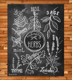 Culinary Herbs Chalkboard Art Print.