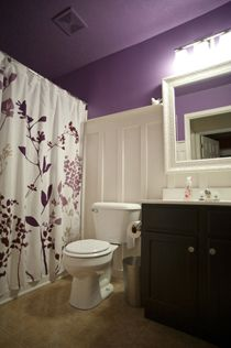 Google Image Result for http://cdn-homeandgarden.craftgossip.com/files/2011/04/board-batten-purple-bathroom_thumb.jpg