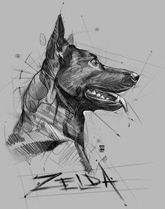 20171115 zelda psdelux by psdeluxe navrhy v roku 2019 taide, eläimet a maal Animal Sketches, Animal Drawings, Pencil Drawings, Art Drawings, Cool Sketches, Drawing Sketches, Malinois Dog, Nature Sketch, Desenho Tattoo