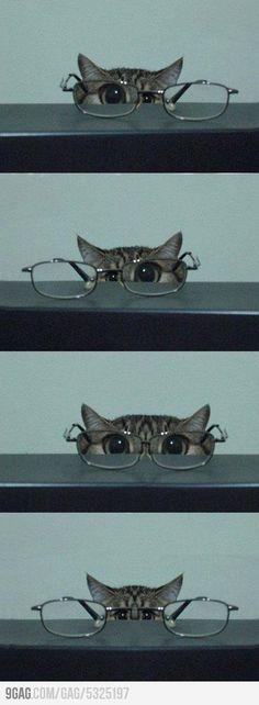 Ich seh dich...