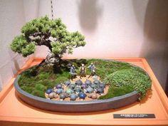 The world of man bonsai