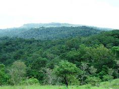 Les aires protégées de Madagascar by Hôtel*** RESTAURANT gourmand COCO LODGE MAJUNGA