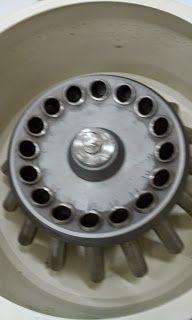 Luego, incubamos durante 5 minutos, mezclamos y centrifugamos a 2000 rpm durante 2 minutos