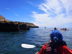 Peninsula Valdes: Kayaking in search of whales