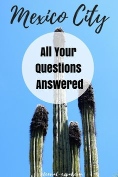 Frequently asked questions about Mexico City! Thinking about visiting Mexico City, but have a lot of questions? This post should help!