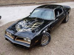 1977 Pontiac Trans Am S/E / Special Edition (black paint with gold accents & striping)