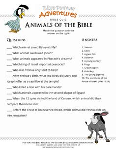Printable bible quiz: Animals of the Bible Bible Activities For Kids, Preschool Bible, Church Activities, Bible Study For Kids, Bible Crafts For Kids, Bible For Kids, Bible Games For Youth, Creation Bible, Sunday School Crafts