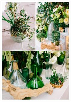 lush green succulents and green jugs