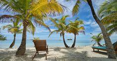Popular on 500px : Belizean greens by edtsousa
