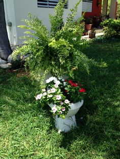 My flower toilet in the yard