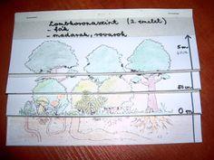 Játékos tanulás és kreativitás: Az erdő szintjei: flipbook és játék Science Activities For Kids, Techno, Montessori, Education, Children, School, Teaching Ideas, Forest Animals, Young Children