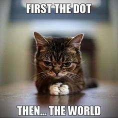 Lol, cats always fall for the dot.