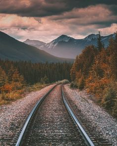 There are places… Cage Fidan Trainspotting 2, Weed Strains, Old Trains, Beautiful Sites, Keep It Real, Train Tracks, Train Station, Model Trains, Railroad Tracks