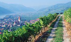 Top 10 Bike-Friendly Wine Tours .... Austria, Weissenkirchen in der Wachau, Danube