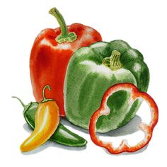 Bell Peppers Jalapeno Painting by Irina Sztukowski - Bell Peppers Jalapeno Fine Art Prints and Posters for Sale