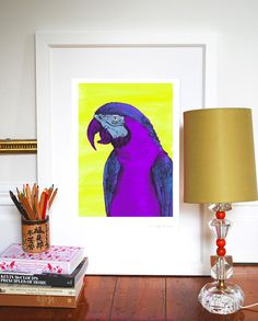 The Macaw A3 Large Print by eviekemp on Etsy, $48.00