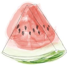 Watermelon Fruit Illustration
