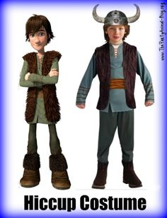 How to Train your DRagon Hiccup Costume