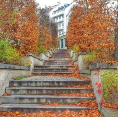 #reveltonholiday There is a place in Karlovy Vary  where each time of the year feels a bit differently! Ascending these stairs you are sure to think: Oh! That's really true that  the golden autumn is the feast for the ey