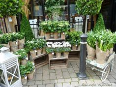 Flower Shop in Harrogate - beautifully displayed flowers - they only sell white flowers - via  Linda Vincent