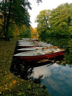 Tiergarten, Berlin  Photography: Désirée Marie Townley