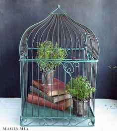 Magia Mia: Chalk Painting A Bird Cage ... Act II