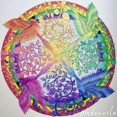 A Rainbow Tale... In a Magical Jungle. #rainbow #birds #magicaljungle #selvamagica #rainbowcolors #artoftheday #adultcolouring #adultcoloringbook #becreative #coloring #coloringforadults #coloringbook #drawing #doodle #enchantedforest #johannabasford #secretgarden #livrodecolorir