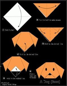 Origami For Kids.: Dog(face) Easy Origami For Kids.: Dog(face) Origami For Kids. Design Origami, Instruções Origami, Origami Ball, Useful Origami, Origami Flowers, Origami Hearts, Dollar Origami, Origami Bookmark, Origami Folding