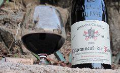 Melhores vinhos da França, melhores vinhos franceses, vinhos franceses, uvas nas regioes da França, mapa das uvas vinhos França