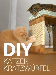 Katzenmöbel / Kratzwürfel für Katzen selber bauen - DIY Anleitung