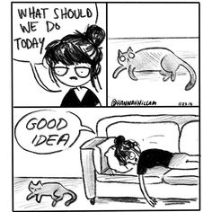 15 Cat Comics That Purrfectly Sum Up Life With Cats Funny Art, Funny Memes, Hilarious, Funny Gifs, Cat Comics, Funny Comics, Crazy Cat Lady, Crazy Cats, Big Cats