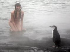 From reddit.  Antarctica w/chinstrap penguin. :)