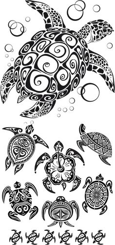 Tattoo Idea!.....my sister is a turtle lover and I just showed her these and she loves them :)