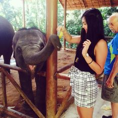 Finally got to meet this beautiful baby elephant today.  #thailand #elephant #siamsafari by merrilynlee