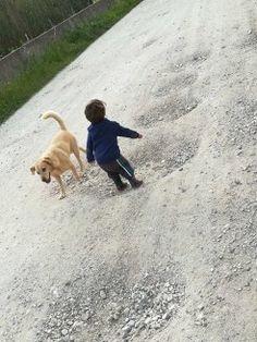 Deixa-los inventar brincadeiras. Para nós, buracos, para eles uma diversão Couple Photos, Dogs, Animals, Pranks, Activities For Babies, Couple Shots, Animales, Animaux, Pet Dogs