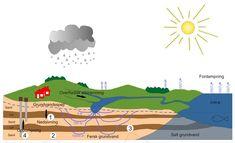 Billedresultat for vandetskredsløb + ler Vand, Movies, Movie Posters, Films, Film Poster, Cinema, Movie, Film, Movie Quotes