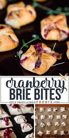 Cranberry Brie Bites are an easy three-ingredient appetizer that are perfect for holiday parties. Warm and delicious – everyone will love them! This time of year is all about holiday togetherness, and… Brie Bites, Yummy Appetizers, Appetizers For Party, Christmas Party Appetizers, Cranberry Appetizer Recipes, Snacks For Party, Healthy Christmas Party Food, Snacks Ideas, Xmas Food