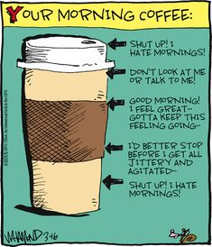 Reality Check by Dave Whamond ~ Your Morning Coffee Coffee Wine, Coffee Talk, Coffee Is Life, I Love Coffee, Coffee Break, Coffee Mugs, Coffee Quotes Funny, Coffee Humor, Coffee Sayings