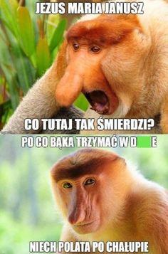 #humorobrazkowy #memy #nosaczsundajski #janusze - Chyukyank - Wykop.pl