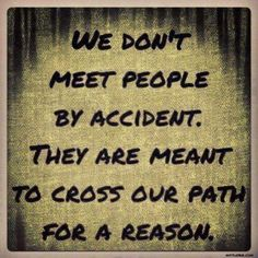 """We don't meet people by accident. They are meant to cross our path for a reason."""