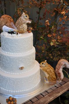 amazing squirrel cake