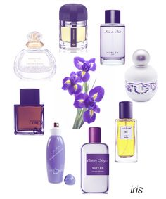 Soft and mysterious: Iris.  Our favorites include Impossible Iris, Iris de Nuit, Swan Princess, Bis, Silver Iris, Il vs. Iris, 04 Petrana from Odin, and Hedonist Iris