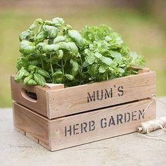 Personalised Crate - Small Planter