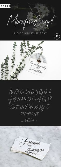Monique Script is an Exclusive Freebie signature font created by Font Forestry