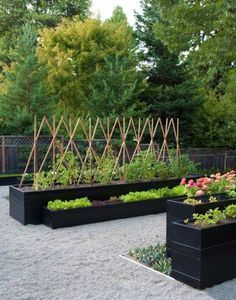 Mmodern backyard ideas and latest trends in decorating outdoor living spaces. Jardin comestible en bacs bien organisés.