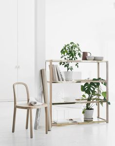 The Botanic Shelf – A multifunctional piece of furniture for your plants