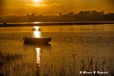 A boat bathes in sunshine on Our Lady's Island lake by Dermot Campbell Wexford Ireland, Gem, Most Beautiful, Sunshine, Boat, Island, Sunset, Places, Outdoor