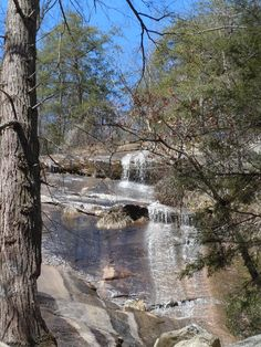 Beautiful day to check out local waterfalls. This one's near Wildcat Wayside Falls a short hike in from Scenic 11 in No. Greenville County, SC.
